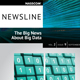 thumbnail of The Big News about Big Data